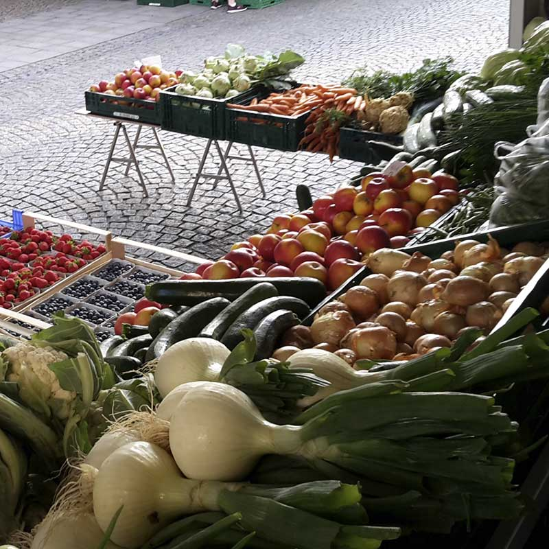 Kirmeier Hof - Gemüse der Saison